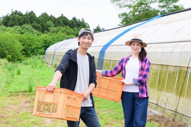 合宿免許で農作業体験ができるなんて!!
