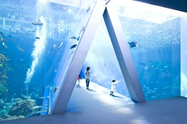環境水族館アクアマリン福島